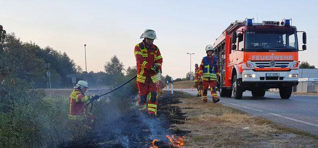 Sehr hohe Gefahr von Wald- und Flächenbränden