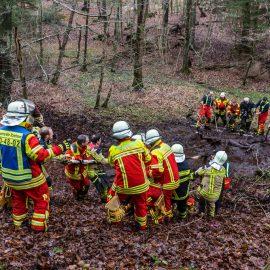 Feuerwehr rettet Pferde aus Waldstück